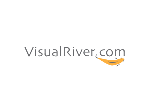 Visual River Logo Design